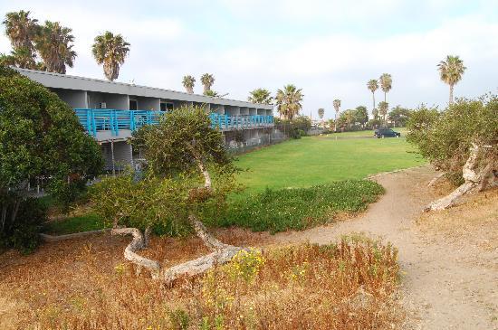 "Ocean Villa Inn: OVI ""backyard"""