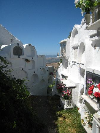 Casares, España: Cementery (I know it sounds gloomy but it so bizarre...)