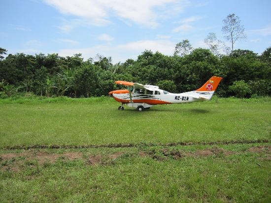 Huaorani Ecolodge: The plane you fly in on and the grass runway