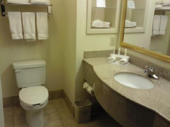 Holiday Inn Express Midland Loop 250: Spacious Bathroom