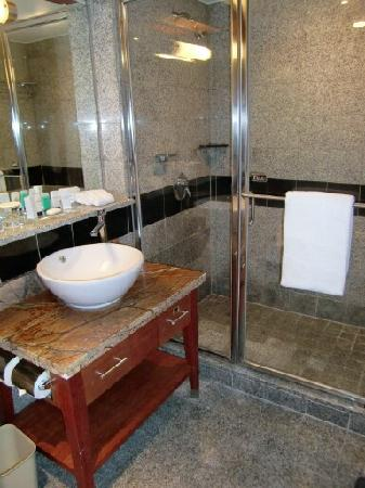 Grand InterContinental Seoul Parnas : Sink & Shower
