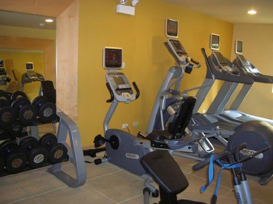 DoubleTree by Hilton Hotel Chicago Wood Dale - Elk Grove: Fitness Center