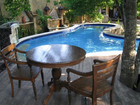 The delightful jungle pool at Alam Gili