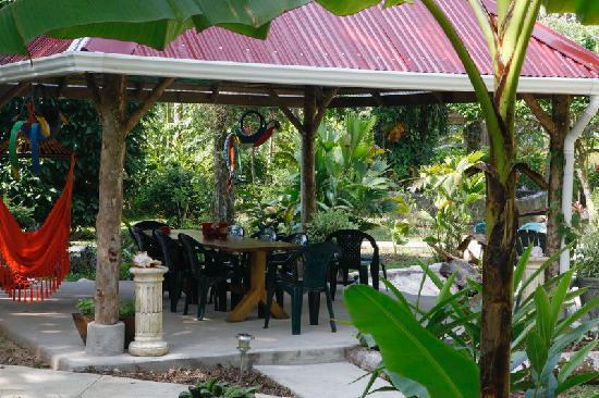 Playa Bluff Lodge: Garden