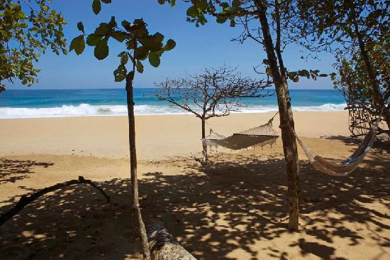 Playa Bluff Lodge: Beach