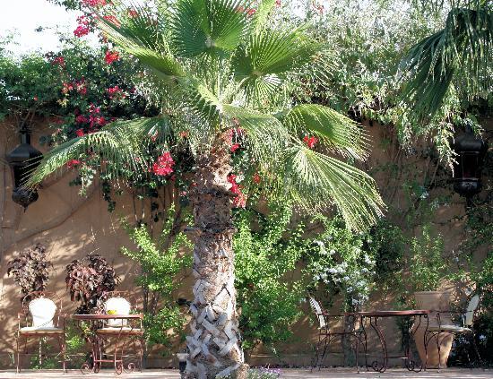 Hotel Dar Zitoune: seating around the swimming pool