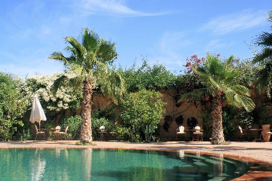 Hotel Dar Zitoune: Swimming pool