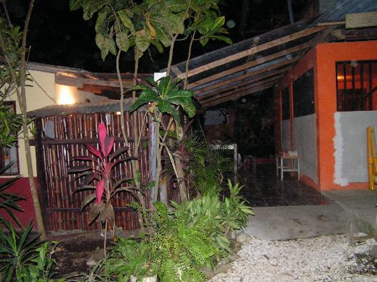 Tropical Pasta: the garden
