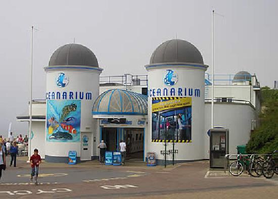 Oceanarium: looks small but it's soooooooooo BIG!!!