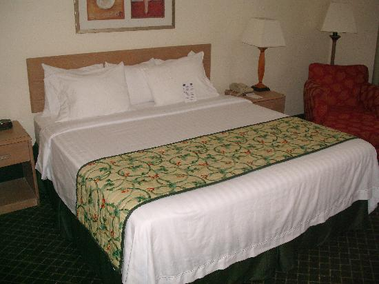 Fairfield Inn & Suites Memphis Southaven: King Room