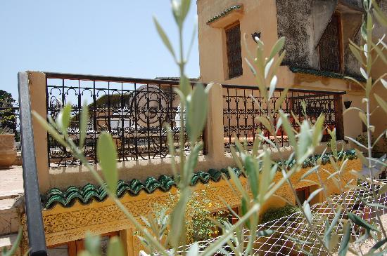 Espace Aum: La terrasse
