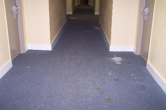 Aarcs Residence Suites: Hallway paint and glue mess