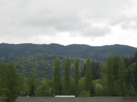 Hilton Garden Inn Seattle/Issaquah: The view from our room