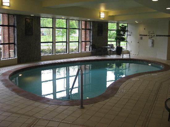 โรงแรมฮิลตันการ์เด้นอินน์ ซีแอตเทิล อิซซาควาห์: The Pool, they had a spa too.