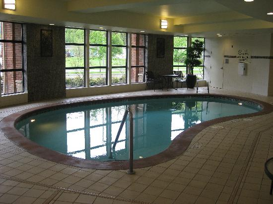 هيلتون جاردن إن سياتل إيزاكوا: The Pool, they had a spa too.