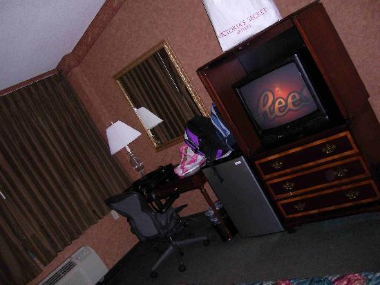 Chicago O'Hare Garden Hotel: room, tv fridge and desk