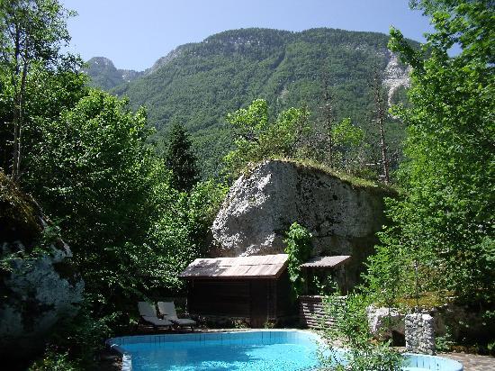 Pristava Lepena: Pool