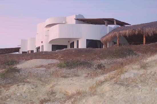 Osprey San Pedrito: Osprey Inn from beach
