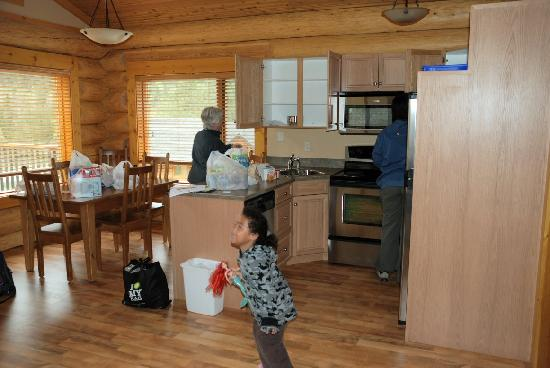 Alpine Meadows Resort : Cabin kitchen and dining area. The mess is our own!