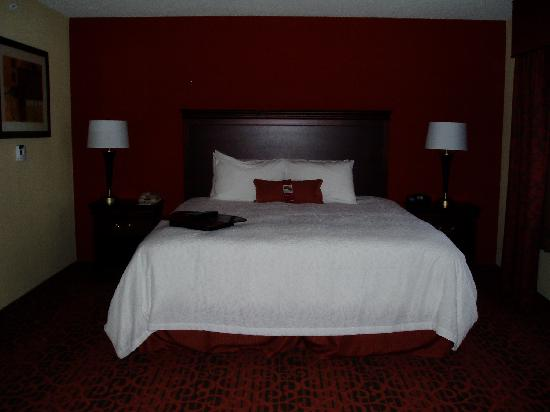Nice bedroom - Picture of Hampton Inn Rochester Webster, Webster ...
