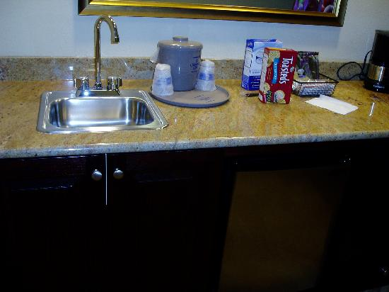 Hampton Inn Rochester Webster: Wet Bar
