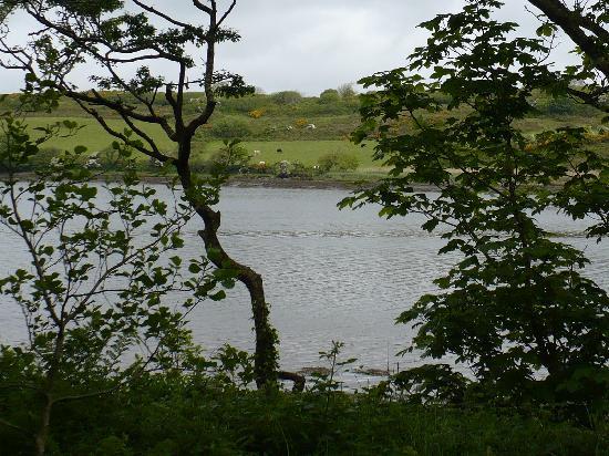 บัลติมอร์, ไอร์แลนด์: view along one of the walking paths