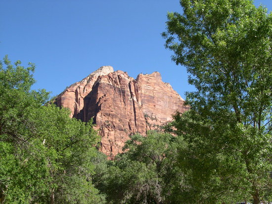 Parque Nacional de Zion, UT: Zion NP in the Morning - 6/2008
