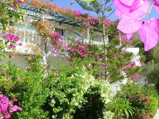 Alinda, Grecia: the best garden