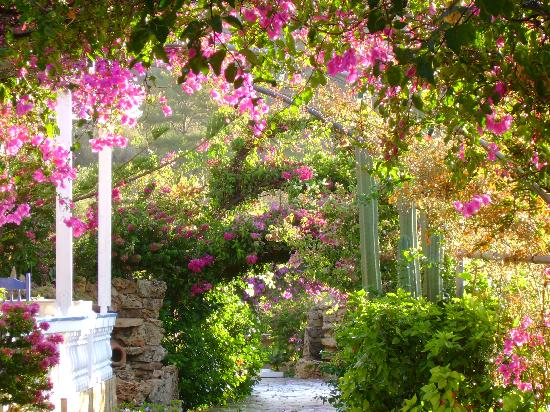 Alinda, Grecia: the most trditional hotel in leros