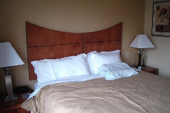 Wingate by Wyndham Convention Ctr Closest Universal Orlando: Bed