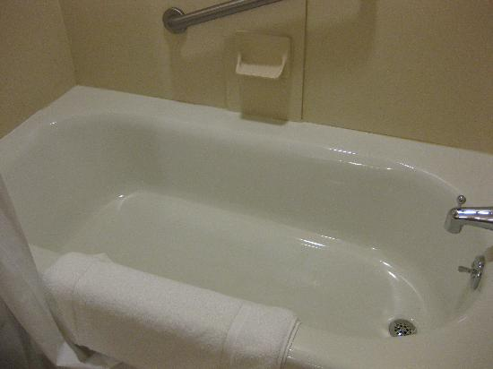 Holiday Inn Express Hotel & Suites Drums-Hazelton : Cleanest tub ever
