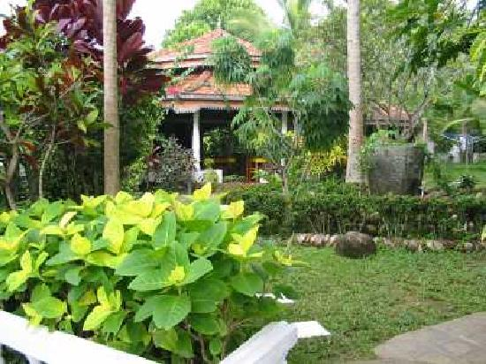 Langeoog Guesthouse: Der tropische Garten