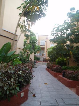 Los Olivos Aparthotel Pretty Walk Through