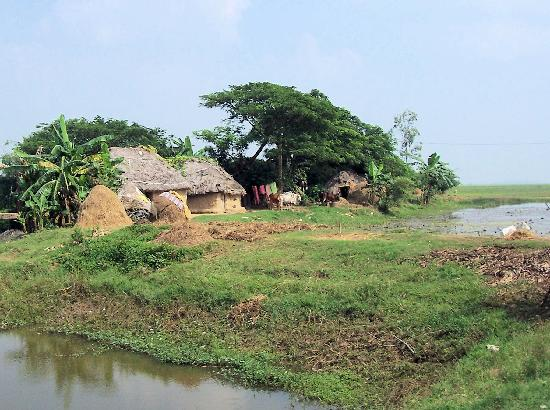 Cuttack, India: A Village