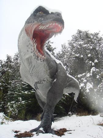 Parque Nahuelito: T-Rex