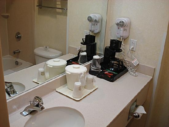 BEST WESTERN PLUS Executive Inn: Bathroom