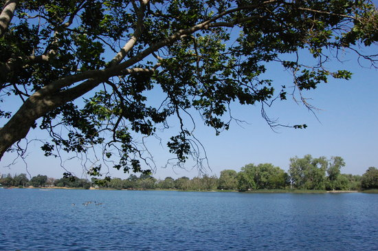 Lodi, Californie : Perfect for duck feeding