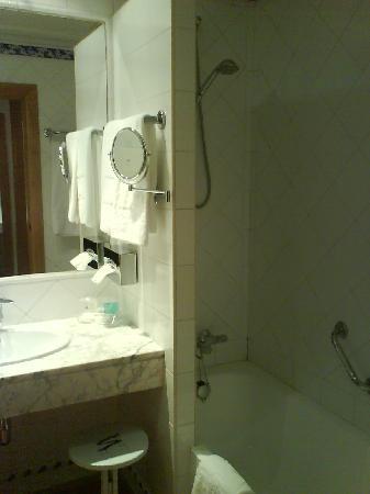 Saray Hotel: baño