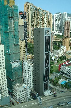 ساوث باسيفيك هوتل: View from room