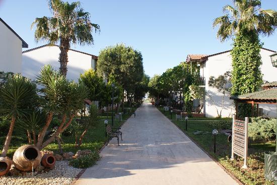 Asa Club Holiday Resort: allée centrale
