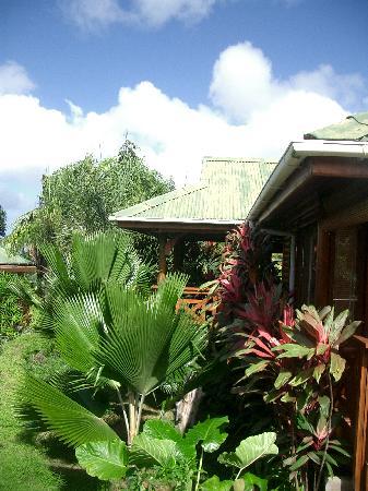 Hotel jardins des palmes