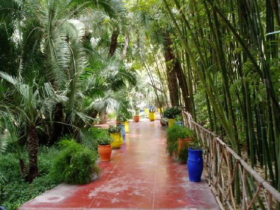 Riad Zolah: Marjorelle gardens