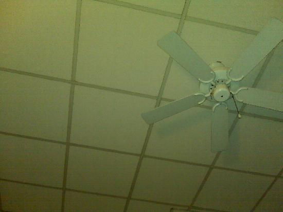 Hotel Foch: Plafond