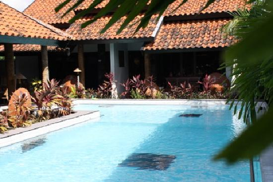 Rumah Palagan Yogyakarta : swimming pool right in front of our room