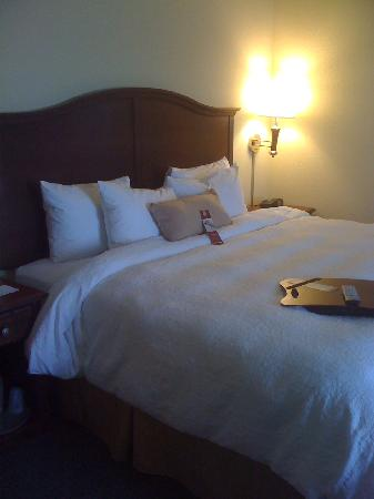 Hampton Inn & Suites Indianapolis-Airport : king bed room