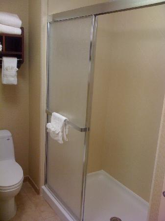 Hampton Inn & Suites Indianapolis-Airport: shower