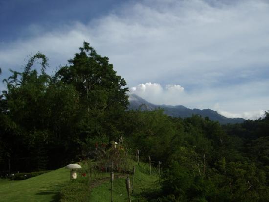 Kalyana Resort: tropical paradise