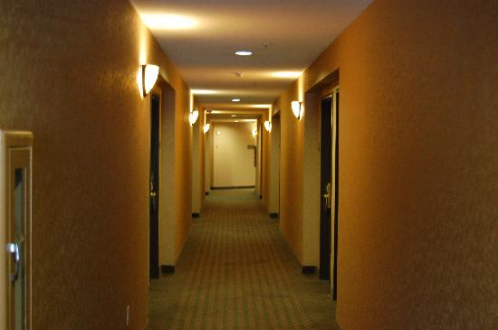 Holiday Inn Express Hotel & Suites - Marina: Hotel Hallway