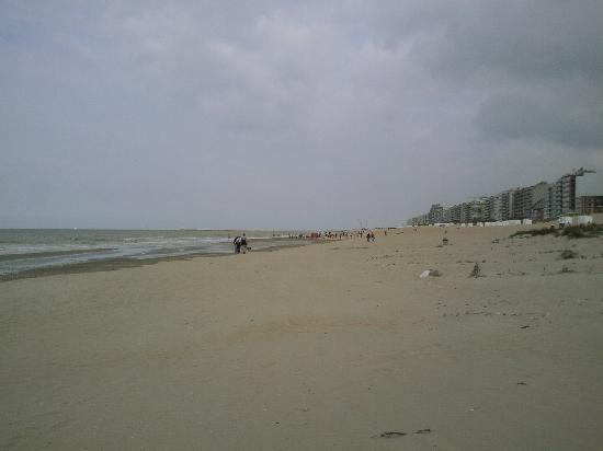 Oostduinkerke, Belgien: LOOKS COLD BUT IT WASNT