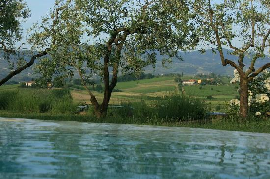 Agriturismo Spazzavento: View out of the pool 1